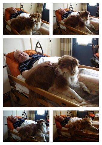 Ja, ik ben een gecertificeerde therapiehond en dat betekent … werken!
